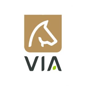 Logo Via